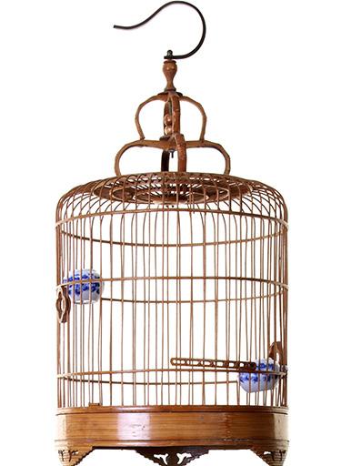 chinese-bird-bamboo-bird-cage