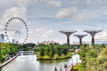 singapore-flyer-and-gardens-by-the-bay